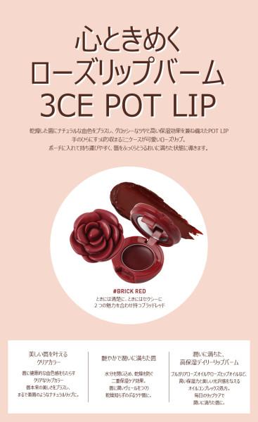 170209-BRICK(1)_jp