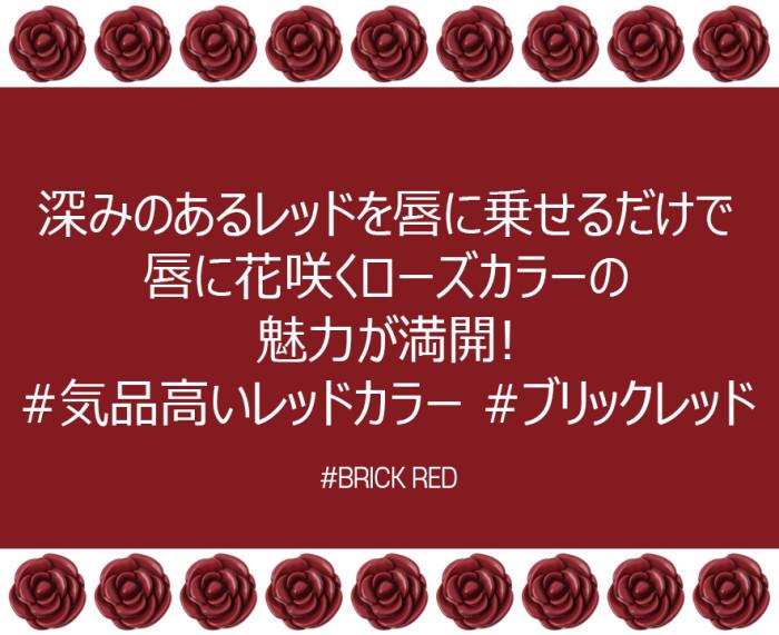 170209-BRICK(6)_jp